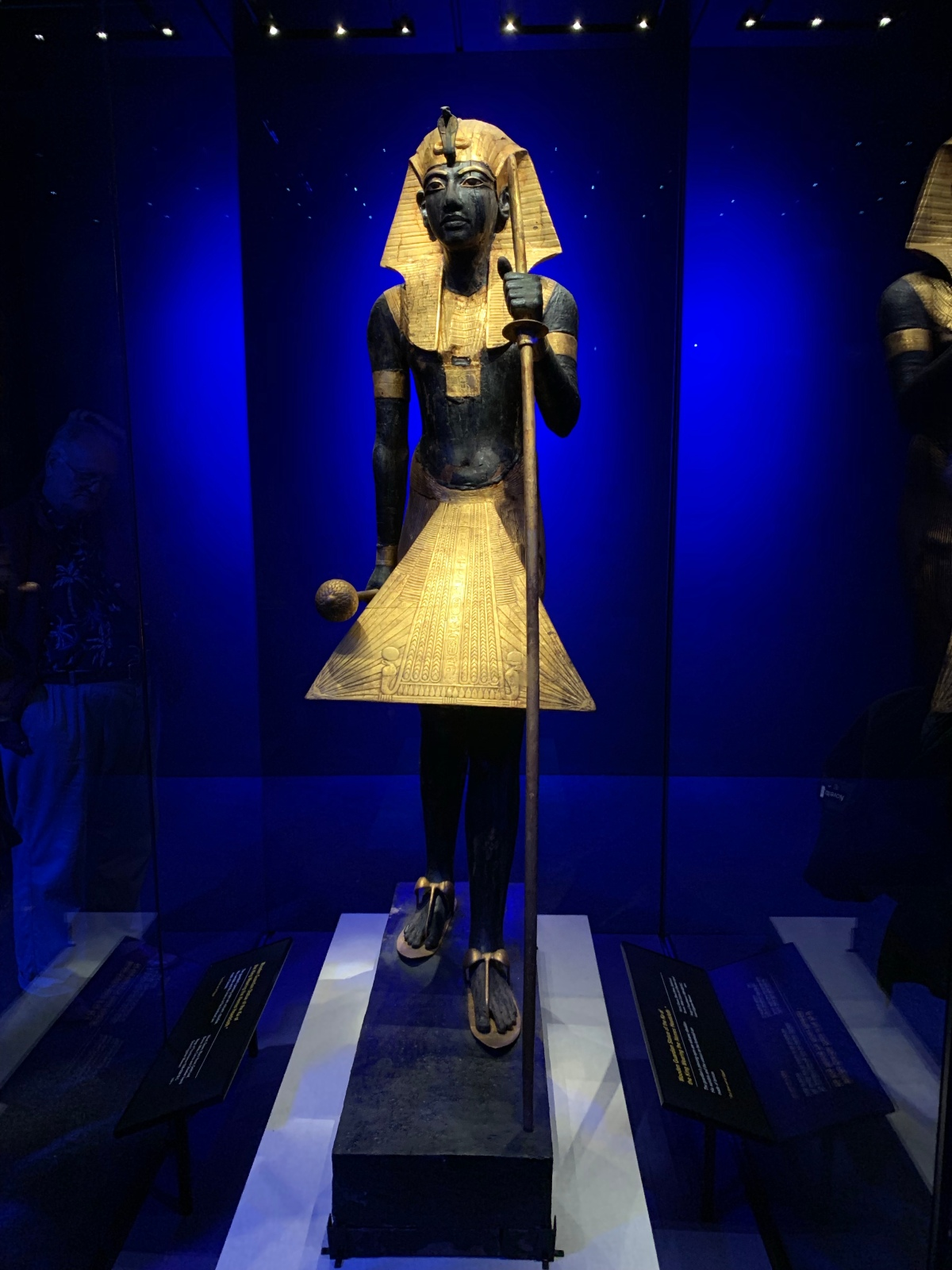 Treasures of the Golden Pharaoh